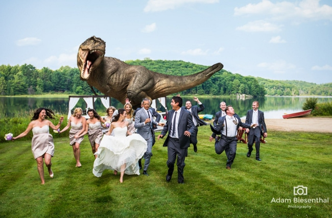 goldblum-wedding