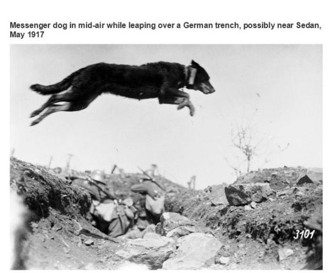 vintage_photos_that_document_interesting_snippets_of_history_640_15