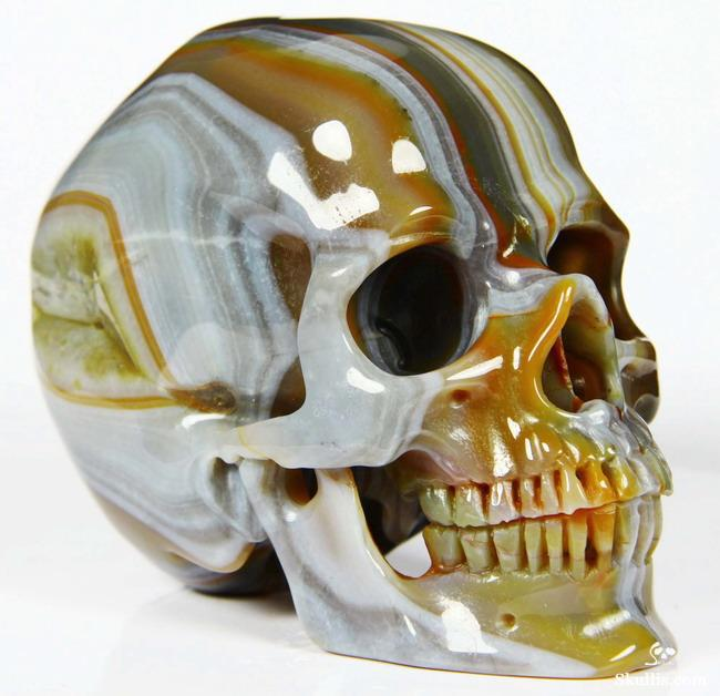 Realistic Human Skulls Carved From Crystal And Gemstone