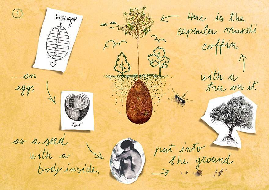 biodegradable-burial-pod-memory-forest-capsula-mundi-3-Optimized
