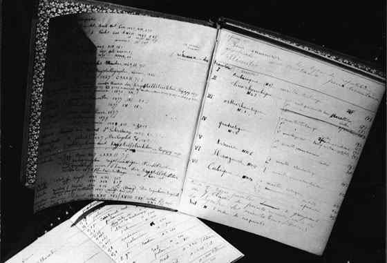 curie-notebooks