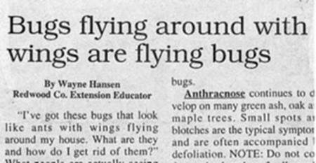 hilarious-newspaper-headline-5