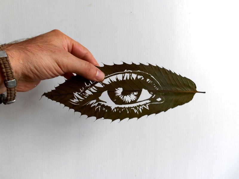 leaf-cut-art-by-omad-asadi-14